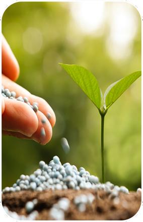 img-fertilizantes